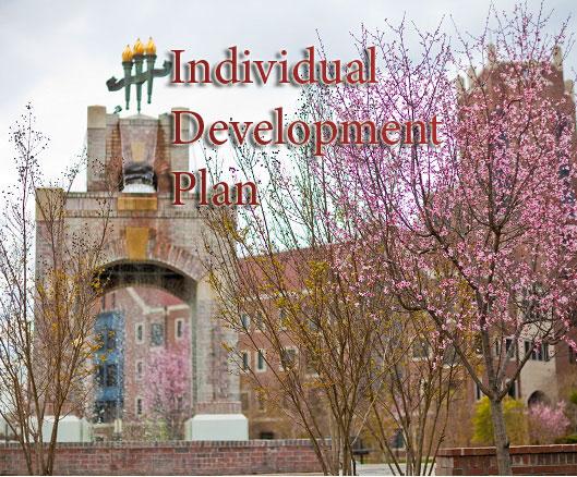 Individual Development Plan (IDP) | The Graduate School
